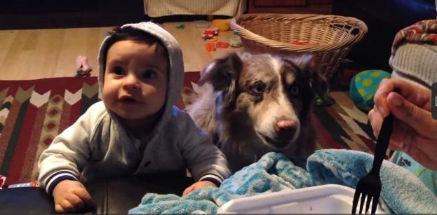 perro-dice-mamá-2