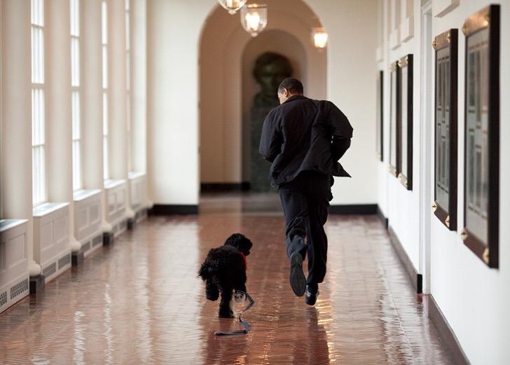 la otra parte de barack obama 7